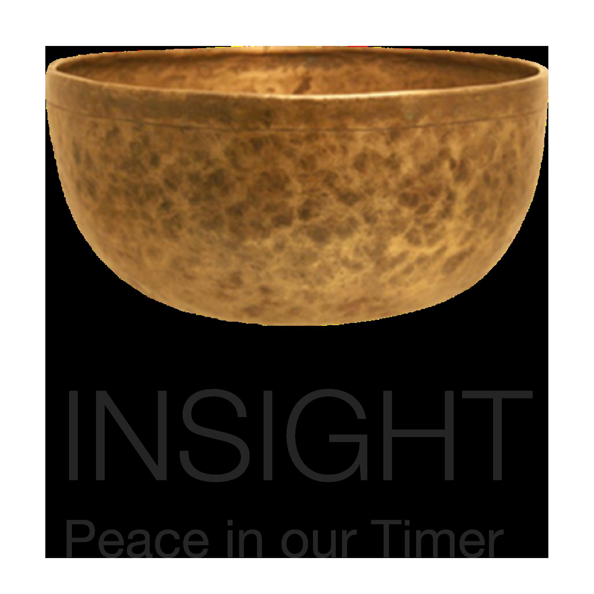 InsightTimer.com